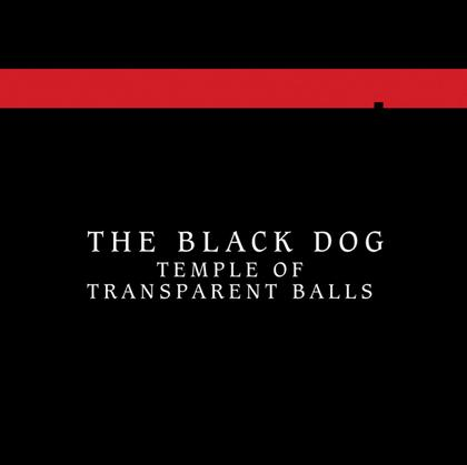 Temple of Transparent Balls cover