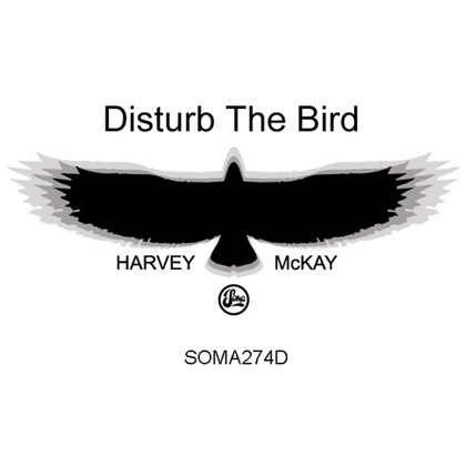 Disturb The Bird cover