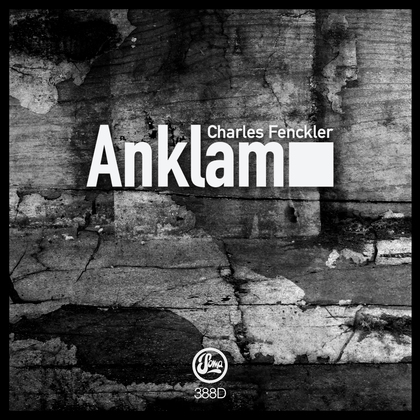 Anklam cover